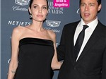 Brad Pitt lừa dối Angelina Jolie, tán tỉnh cô nàng gợi cảm Marion Cotillard?