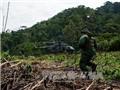 Venezuela triệt phá một đường dây ma túy thu giữ 3,4 tấn cocaine