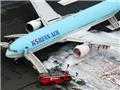 Máy bay Hàn Quốc bốc cháy ở Tokyo: không nghi ngờ về khủng bố