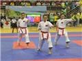 Việt Nam nhất toàn đoàn giải karatedo Việt Nam mở rộng 2016