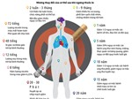 Ngừng hút thuốc lá chỉ sau 30 phút, bạn sẽ thấy ngay tác dụng này