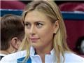 Luật sư của Sharapova: 'WADA nợ cô ấy một lời xin lỗi'