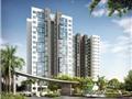 Cất nóc The Habitat - dự án bất động sản dân dụng đầu tiên