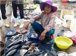 VIDEO: Người dân miền Trung nói về nguyên nhân gây ra cá chết hàng loạt