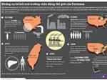 Đồ họa: Formosa từng nhận giải 'Hành tinh đen' vì những bê bối môi trường