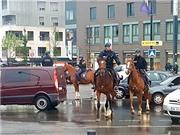 """Thư EURO: Thoảng nghe vó ngựa """"ngự lâm quân"""""""