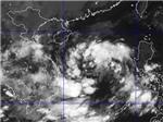 Trong 24 giờ tới áp thấp nhiệt đới có thể mạnh lên thành bão