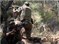 Thổ Nhĩ Kỳ: Truy lùng nhóm binh lính âm mưu ám sát Tổng thống Erdogan