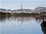 Olympic Rio 2016: Biển tràn ngập rác, bơi thì phải ngậm mồm