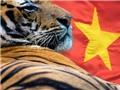 """Việt Nam - """"Con hổ"""" châu Á đang trỗi dậy"""