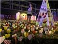 Giới trẻ thích thú với hàng trăm điểm 'check in' đẹp tại 'lễ hội triệu đô' ở Đà Nẵng