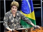 Tổng thống Brazil Rousseff tự bào chữa trước tòa