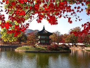 Kinh nghiệm du lịch - phượt Hàn Quốc mùa Thu 2016