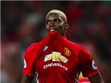 Dirk Kuyt: Paul Pogba quát tháo, hét vào mặt đồng đội ở Man United