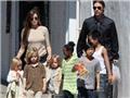 Brad Pitt khóc lóc cầu xin được gặp con trước cáo buộc bạo hành