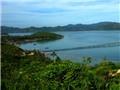 Bắt đối tượng dùng hóa chất Trung Quốc hủy diệt thủy sản đầm Cù Mông