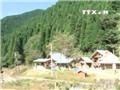 VIDEO: 'Phát sốt' với nhà trẻ trong rừng sâu tại Nhật Bản