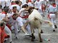 Tòa án Hiến pháp Tây Ban Nha hủy bỏ lệnh cấm đấu bò tót