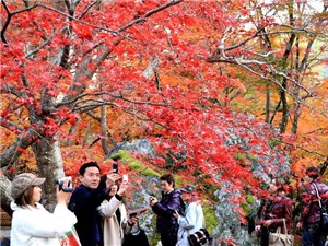10 điểm đừng bỏ qua khi đến cố đô Kyoto