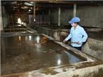 Bộ Công an vào cuộc làm rõ vụ thông tin nước mắm bị nhiễm asen vượt mức cho phép gây hoang mang dư luận