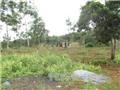 Vụ nổ súng ở Đắk Nông: Nghi phạm Đặng Văn Hiến ra đầu thú, khởi tố thêm 2 bị can