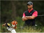 Tiger Woods & nỗi lo ngày trở lại