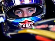 "Max Vestappen: ""Hot boy"" nổi loạn làng F1"