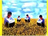 56 nghệ sĩ đương đại Việt Nam trong một cuốn sách