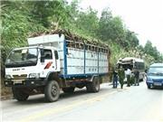 Lại tai nạn nghiêm trọng: Xe khách, xe tải đâm nhau, 11 người bị thương