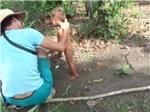 Đã bắt được nghi can hành hạ trẻ em khi đang lẩn trốn tại TP.HCM