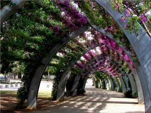 15 thung lũng mùa xuân đẹp nhất từ khắp nơi trên thế giới
