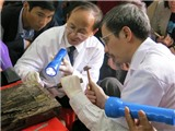 Chuyên gia khảo cổ nói về việc 'tìm thấy mộ Trạng Trình'