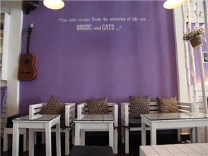 Rủ nhau đi 'sống ảo' tại quán cafe cực xinh