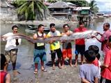 'Rồng biển' liên tục xuất hiện, người Philippines lo lắng