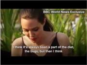 VIDEO: Tự tay chế biến, Angelina Jolie đào tạo các con ăn... nhện